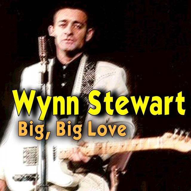 Couverture de Big, Big Love