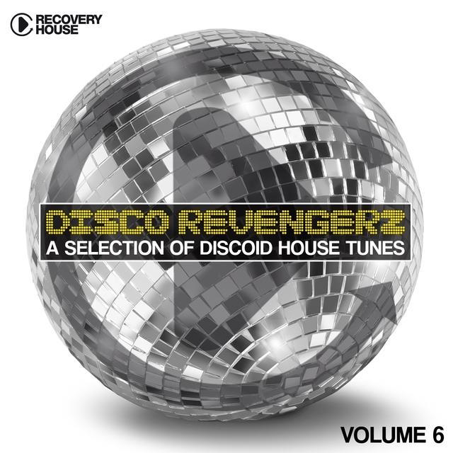 Disco Revengers, Vol. 6 - Discoid House Selection
