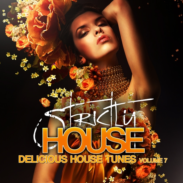 Strictly House - Delicious House Tunes, Vol. 7