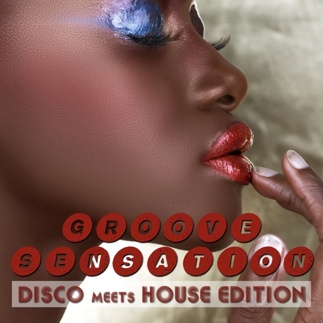 Groove Sensation, Vol. 3 - Disco Meets House Edition