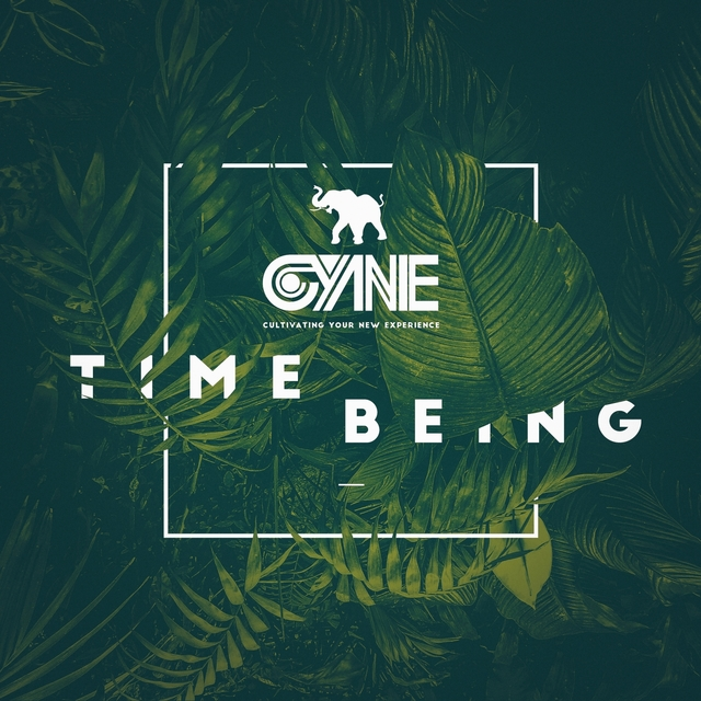 Time Being (Deluxe Edition)