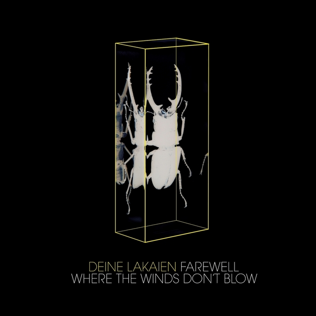Farewell/Where the Winds Don't Blow