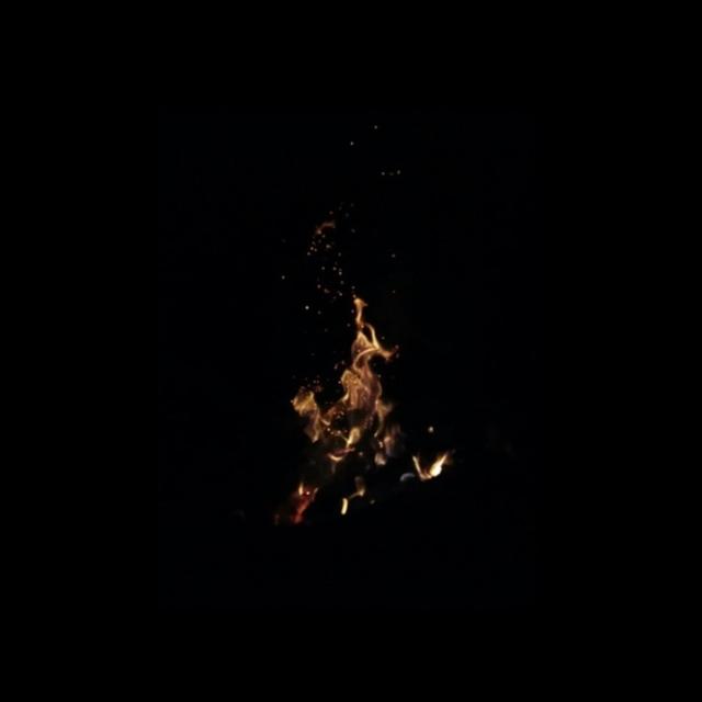 Couverture de Wildfires
