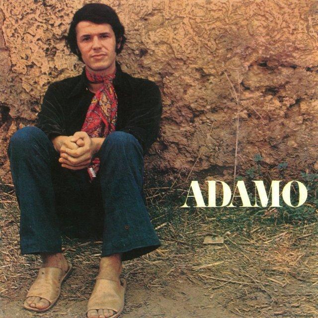 Adamo - studio 5