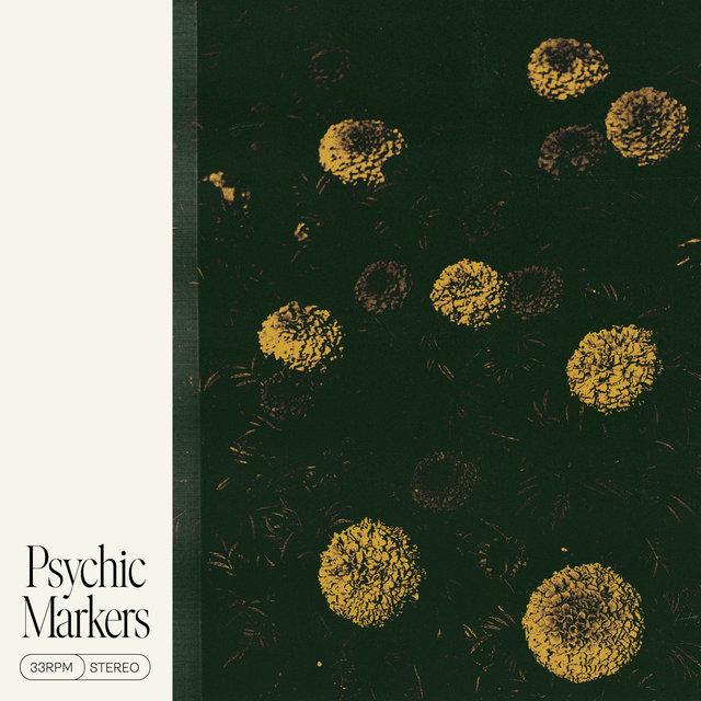 Couverture de Psychic Markers