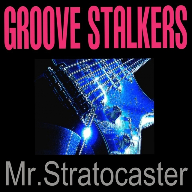 Mr. Stratocaster