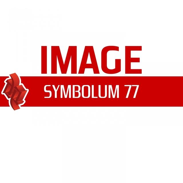 Symbolum 77