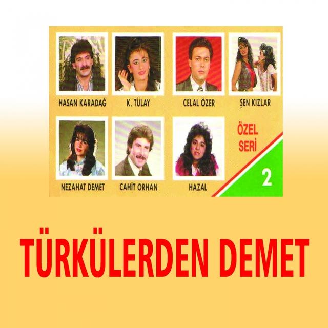Türkülerden Demet, Vol. 2