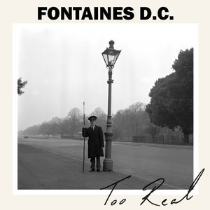 Too Real | Fontaines D.C.