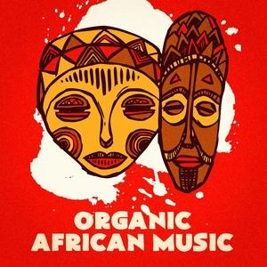 Organic African Music | The World Music Ensemble