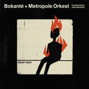 What Heat | Metropole Orkest