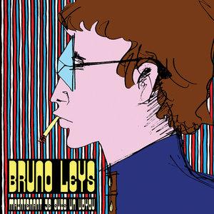 Maintenant je suis un voyou | Bruno Leys