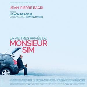 La vie très privée de monsieur Sim | Vincent Delerm