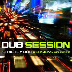 Dub Session,  Vol. 2 | Sebastian Krieg