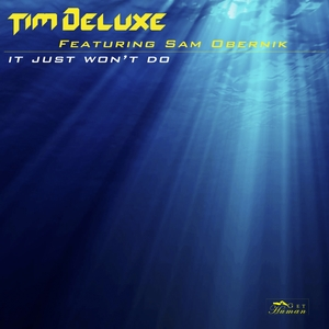 It Just Won't Do | Tim Deluxe
