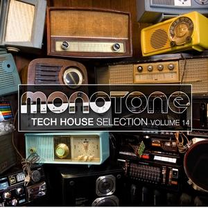 Monotone, Vol. 14 | ATFC