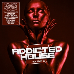 Addicted 2 House, Vol. 16   Peter Brown