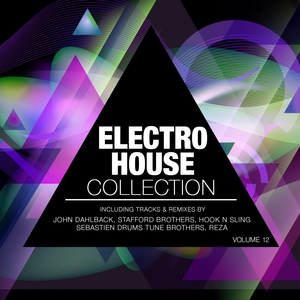 Electro House Collection, Vol. 12 | Richard Dinsdale
