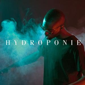 Hydroponie | Alpha Wann