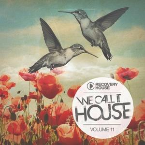 We Call It House, Vol. 11 | Josha