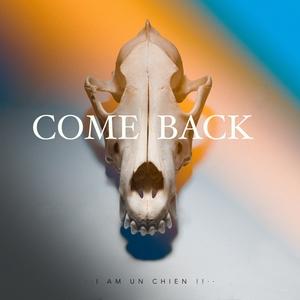 Come Back | I AM UN CHIEN !!