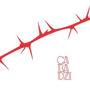 Des angles et des épines   Cabadzi