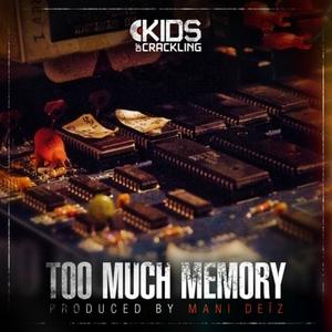 Too Much Memory | Mani Deïz