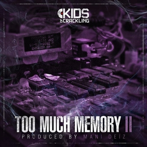 Too Much Memory, Vol. 2 | Mani Deïz