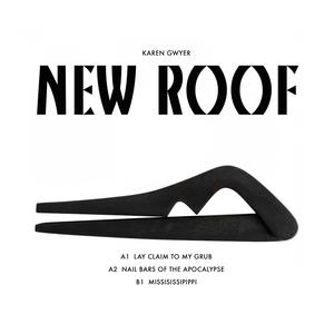 New Roof | Karen Gwyer