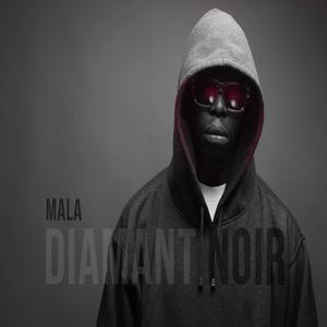 Diamant noir |