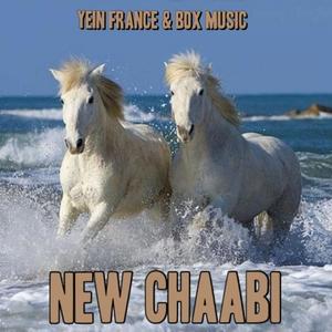 New Chaabi | Mustapha Bourgogne