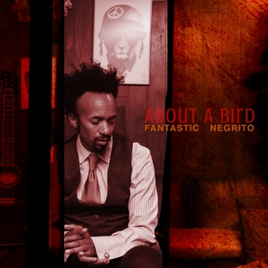 About a Bird | Fantastic Negrito