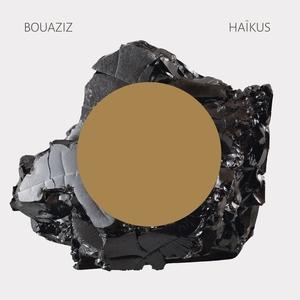 Haïkus | Pascal Bouaziz
