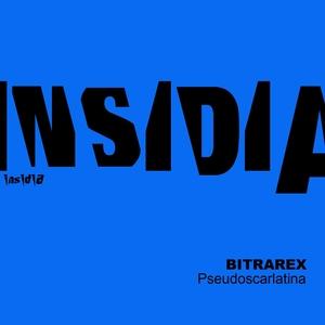 Pseudoscarlatina | Bitrarex