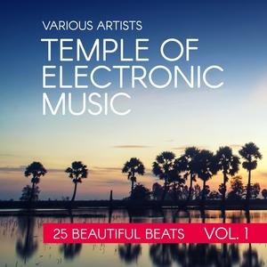 Temple Of Electronic Music (25 Beautiful Beats), Vol. 1 | DJ Dope