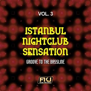 Istanbul Nightclub Sensation, Vol. 3 (Groove to the Bassline) | Hitfinders