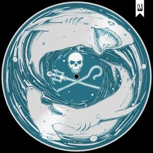 Sea Shepherd Benefit, Vol. 2 | The Flatliners