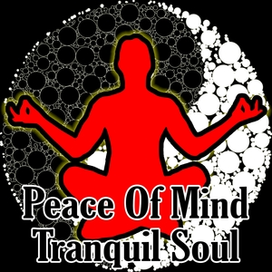 Peace Of Mind Tranquil Soul   Meditation Masters