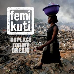 The World Is Changing   Femi Kuti