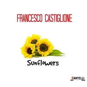 Sunflowers   Francesco Castiglione
