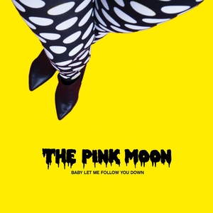 Baby Let Me Follow You Down   The Pink Moon