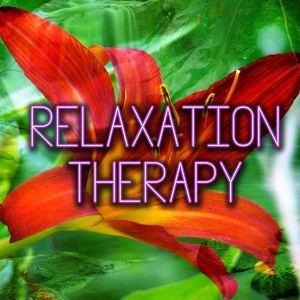 Relaxation Therapy   Guided Meditation