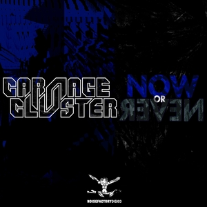 Now or Never | Carnage & Cluster