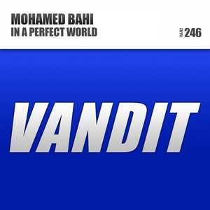 In a Perfect World | Mohamed Bahi