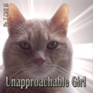 Unapproachable Girl | Z Car M