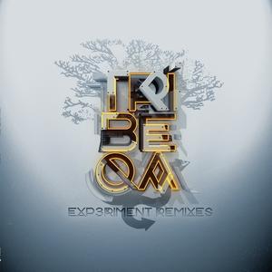 Experiment Remixes | Tribeqa