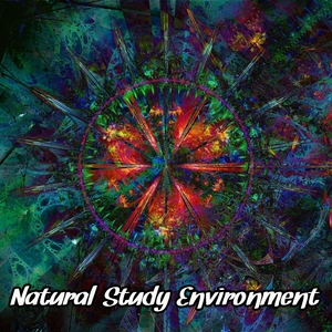 Natural Study Environment | Brain Study Music Guys