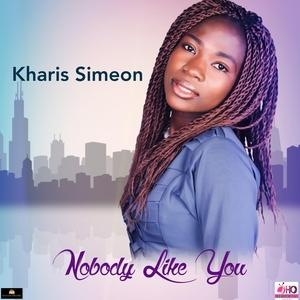 Nobody Like You |