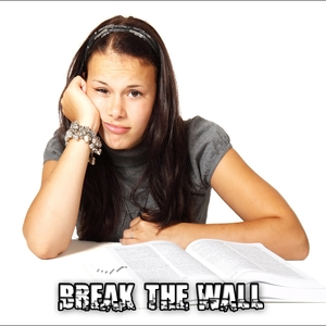 Break The Wall | Exam Study Classical Music Orchestra