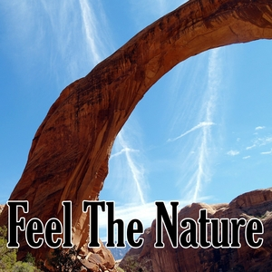 Feel The Nature | Healing Sounds for Deep Sleep and Relaxation